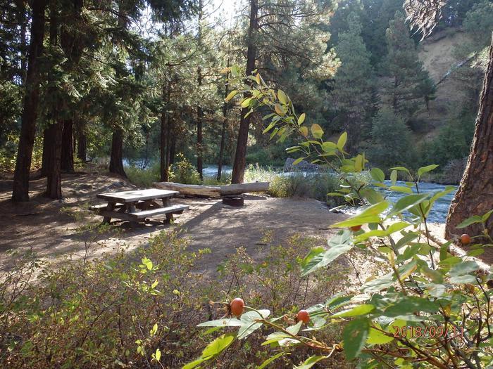 Hause Creek CampgroundCampsite 12