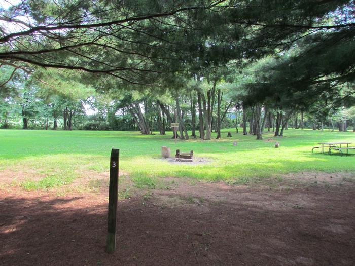 Site 3