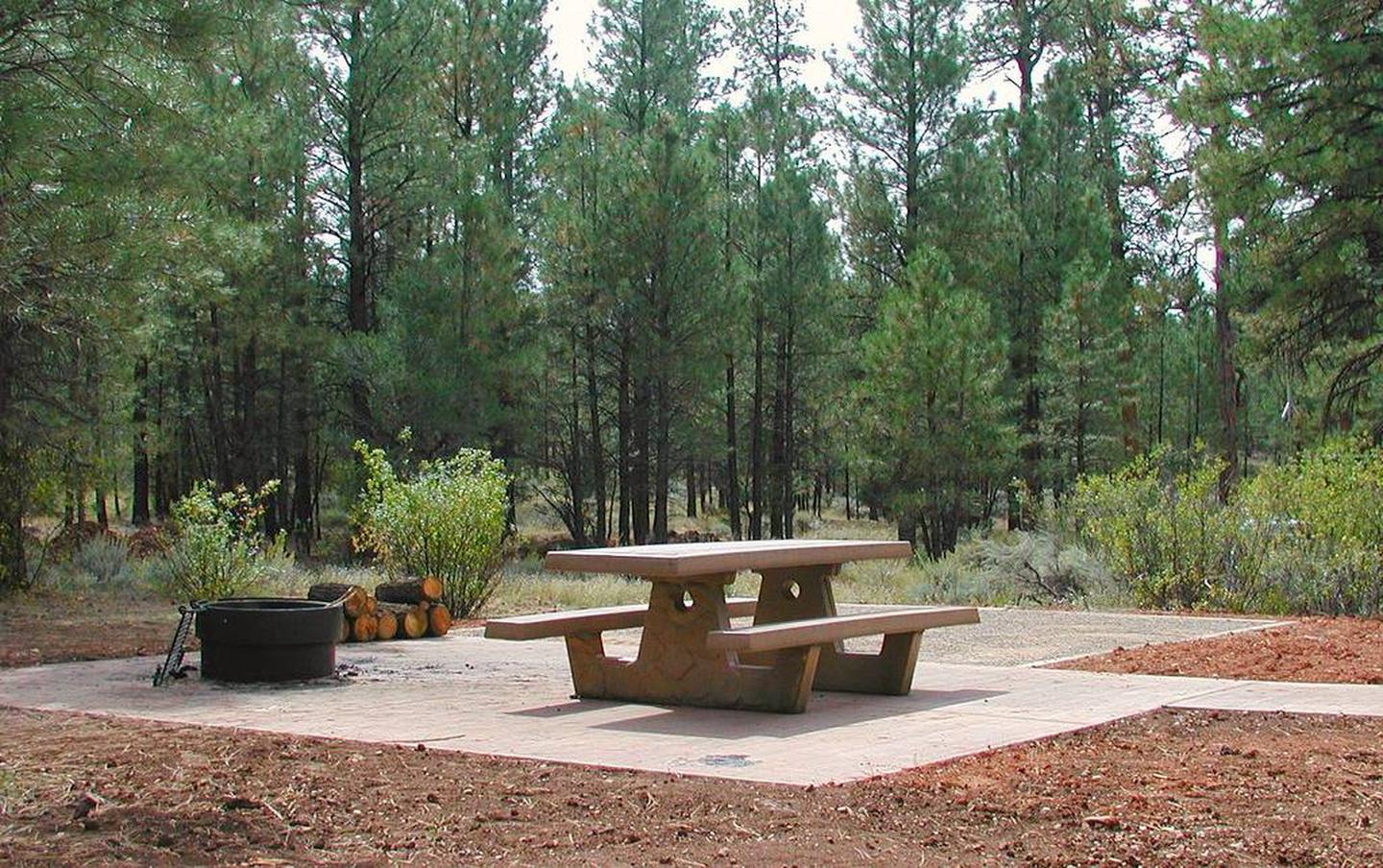 Camp siteCamp sites are spacious and provide a picnic table, fire ring and hardened surface for tents and gear.
