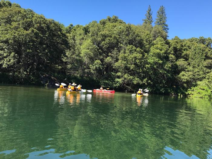 A tour of brightly colored kayaks pauses near a forested shoreline. The water is clear, emerald-green, and inviting.A ranger-led kayak tour on Whiskeytown Lake