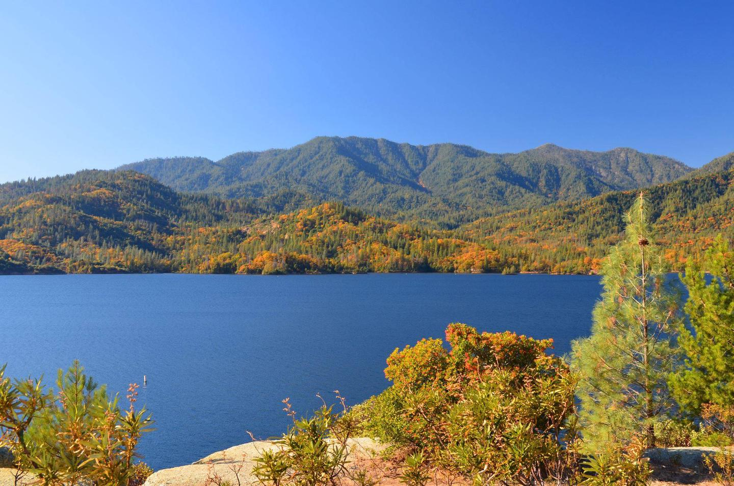 Steep mountains rise from the shores of a blue lake, under a cloudless blue sky. Fall foliage adds splashes of bright orange to a backdrop of green trees along the shore.Shoreline of Whiskeytown Lake in fall