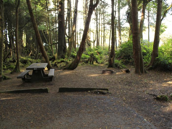 Picture of campsite A3 with picnic table and fire pit. Campsite A3