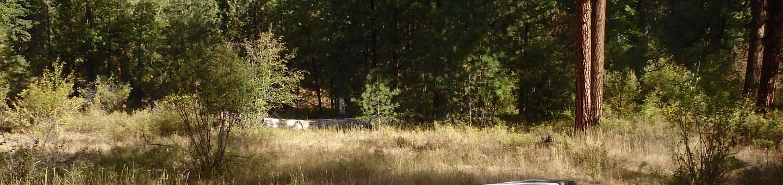 Hause Creek CampgroundCampsite 21