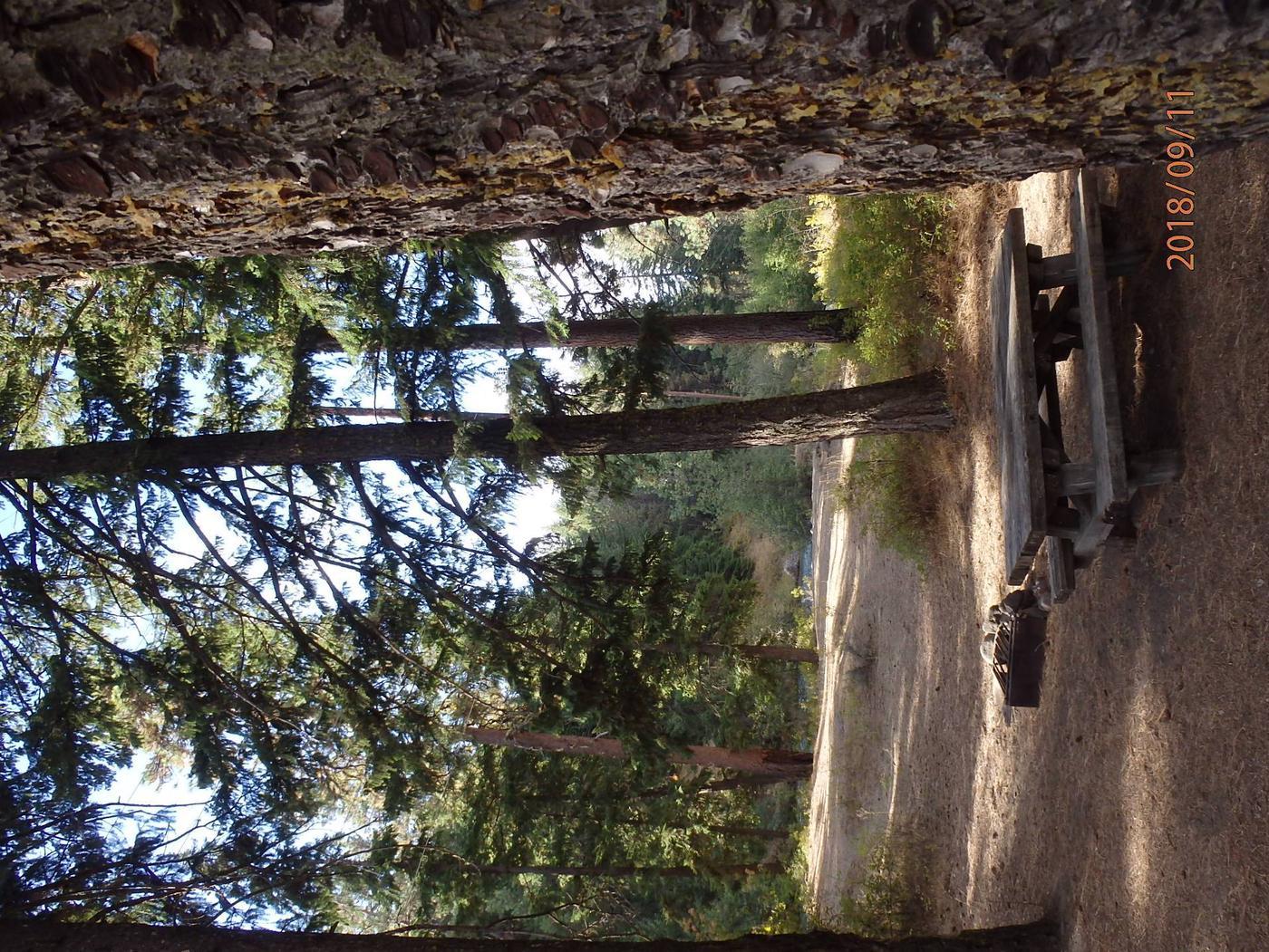 Hasue Creek CampgorundCampsite 22