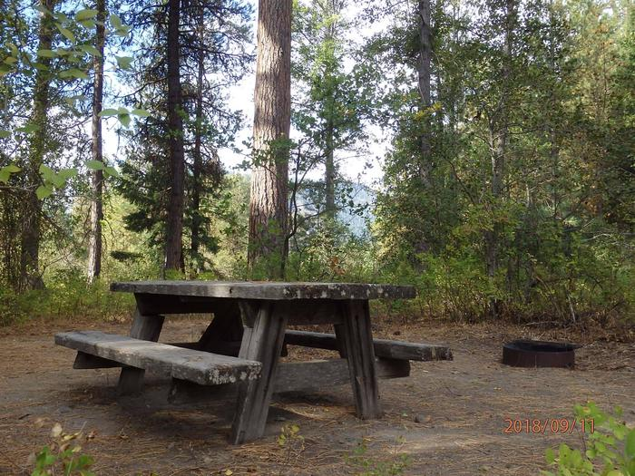 Hause Creek CampgroundCampsite 23 a nice secluded site