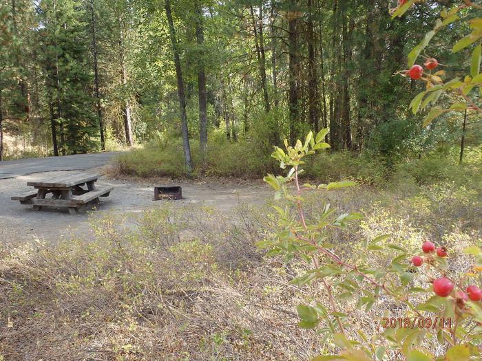 Hause Creek CampgorundCampsite 26
