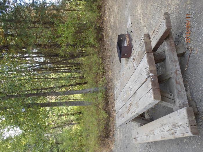 Hause Creek CampgroundCampsite 26