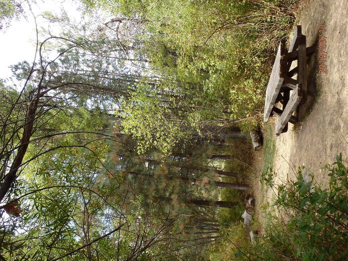 Hause Creek CampgroundCampsite 27