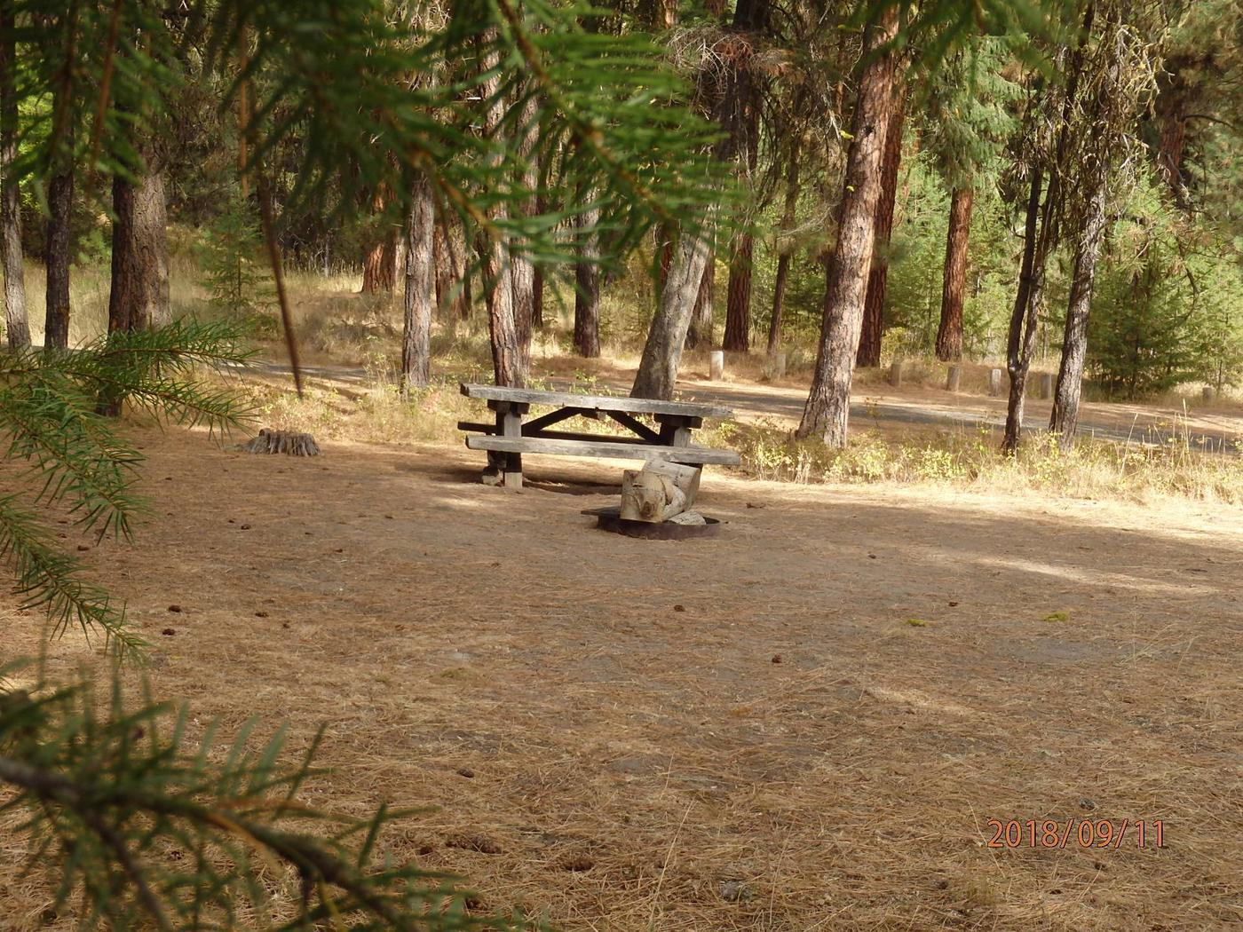 Hause Creek CampgroundCampsite 34