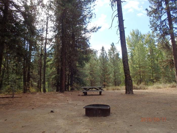 Hause Creek CampgroundCampsite 35