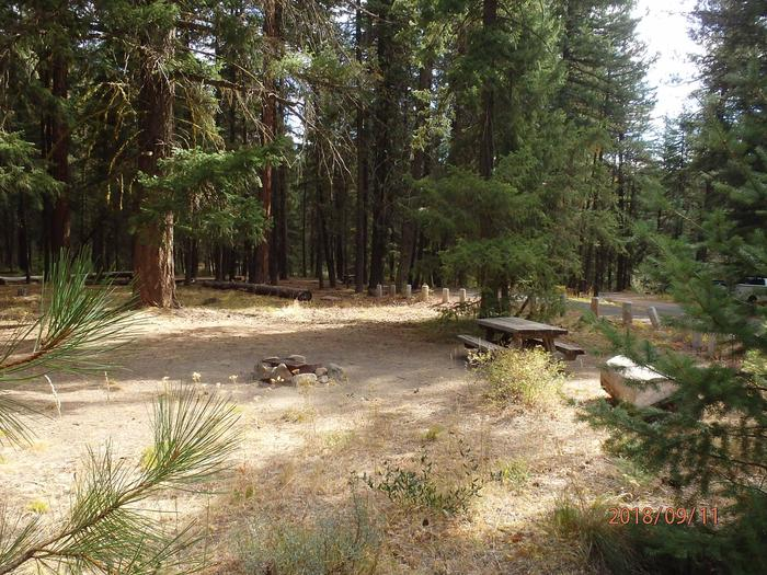 Hause Creek CampgroundCampsite 38