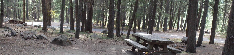 Hause Creek CampgroundCampsite 39