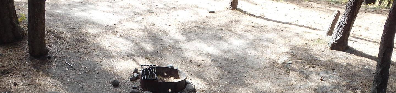 Hause Creek CampgroundCampsite 40