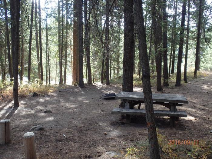 Hause Creek CampgroundCampsite 41