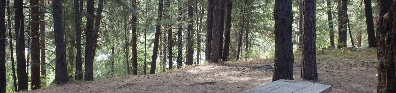 Hause Creek CampgroundCampsite 42