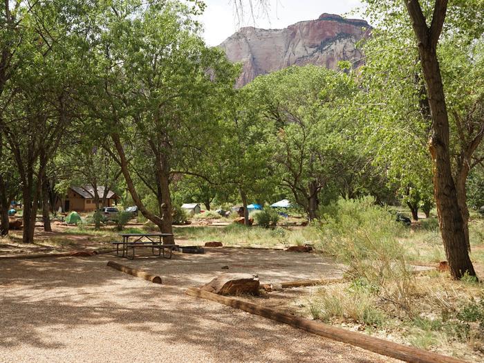 Campsite areaD23