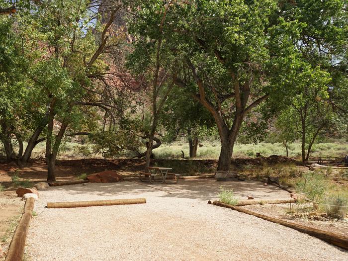 Campsite areaD24
