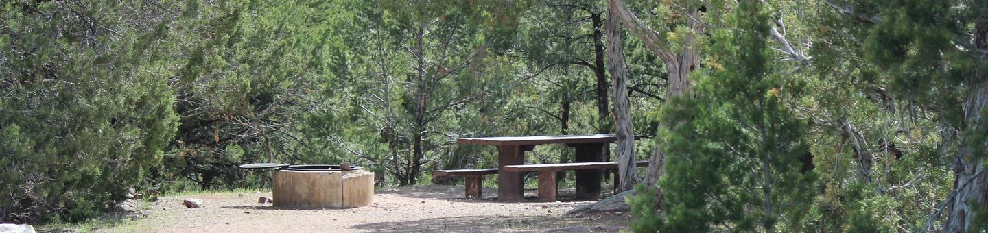 A picnic and fire pit are located in a gravel area in the trees.Cedar Springs Campground: Site 18