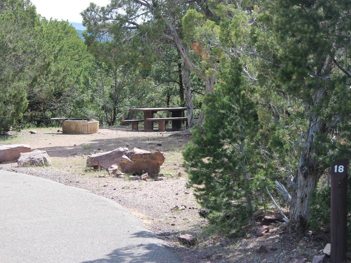 A picnic and fire pit are located in a gravel area in the trees to the side of the asphalt. There is a marker representing the beginning of the camp site.Cedar Springs Campground: Site 18