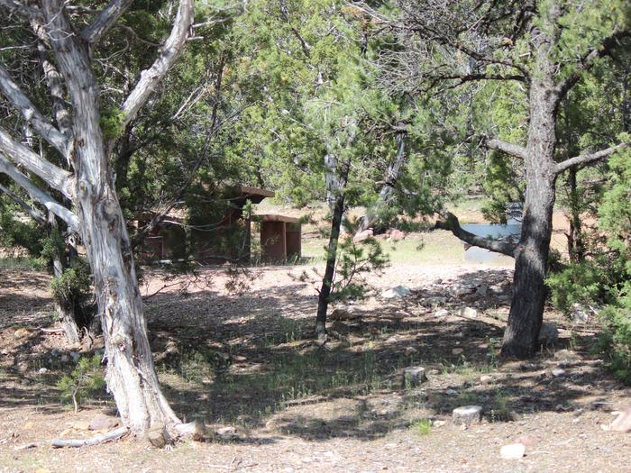 Picnic table and fire pit in a semi grassy area with trees surrounding the area.Cedar Springs Campground: Site 20