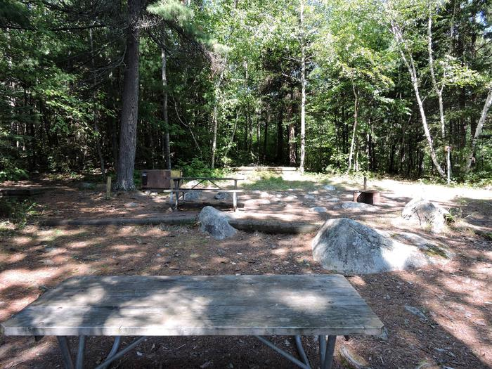 S11 - King Williams Narrows Campground (Site D)