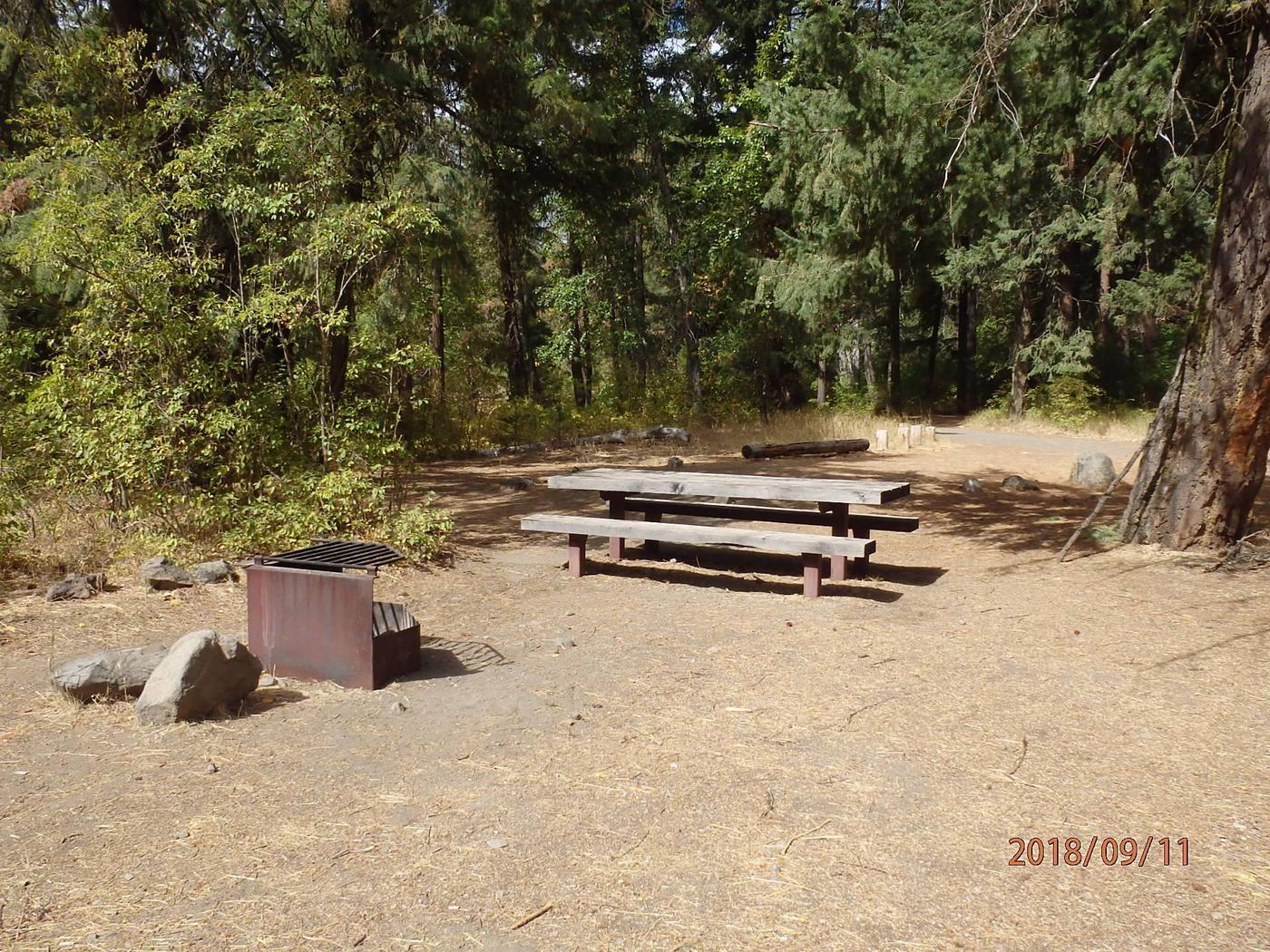WIllows CampgroundCampsite 1