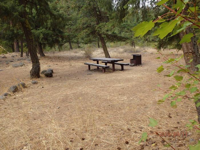 Willows CampgroundCampsite 4