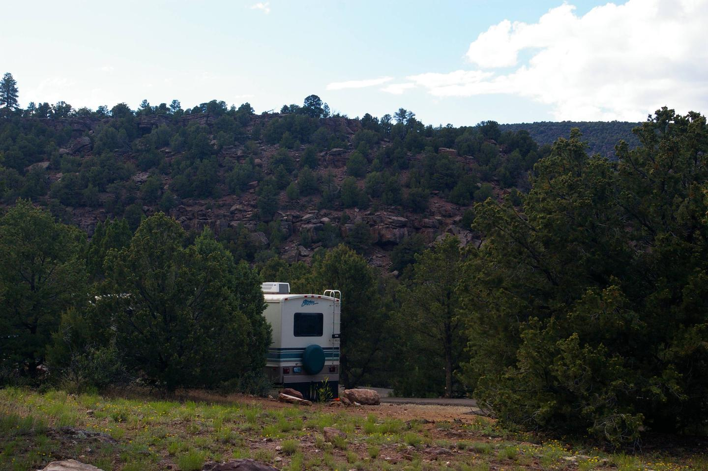 A large motor home is parked in a camp site. There are trees lined on both sides and a hillside with red rocks and trees can be seen from the site.Cedar Springs Campground