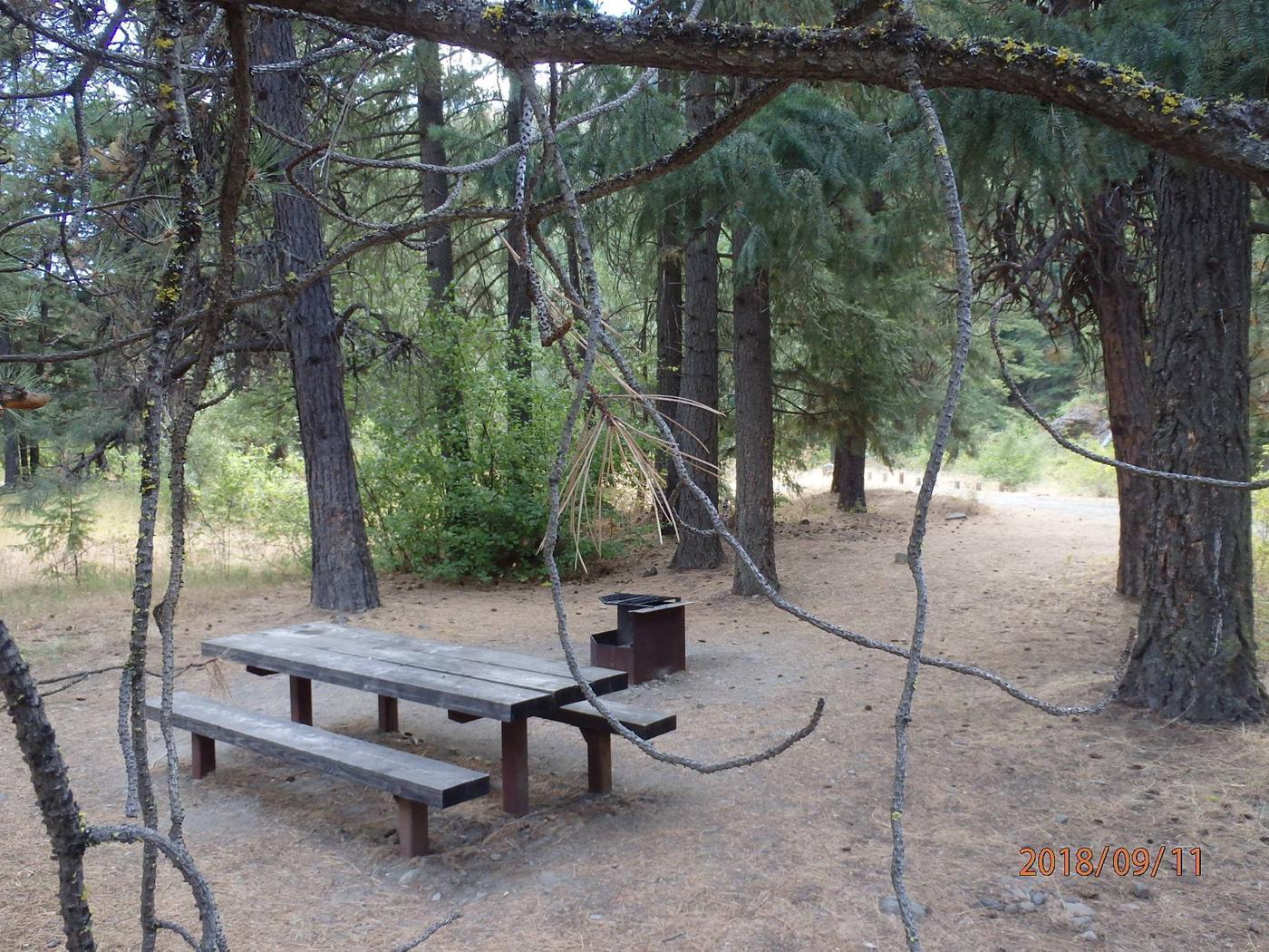 Willows CampgroundCampsite 10