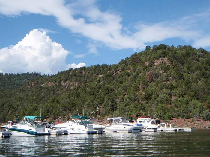 Boats in dock slips in a marina with a mountain of red rock and trees in the background.Cedar Springs Marina