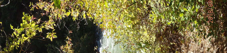 Willows CampgorundNice quiet CCampground