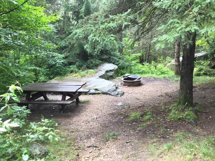 Loleta Recreation Area: Site 1