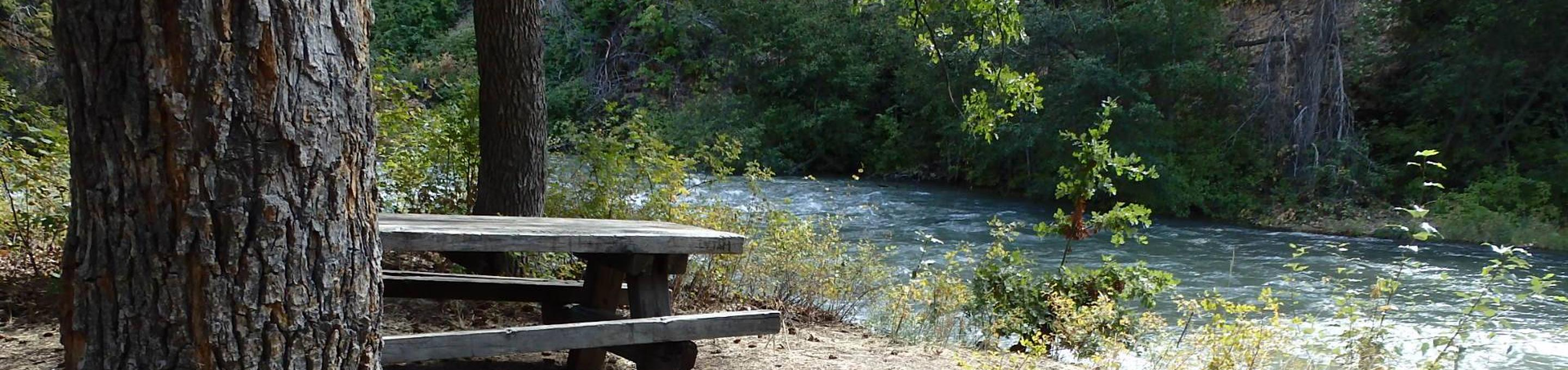 Windy Point CampgroundSite offers views of the River