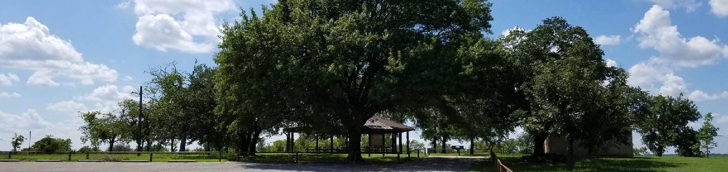 Group Shelter at Longhorn Park viewed beneath treesGroup Shelter at Longhorn Park
