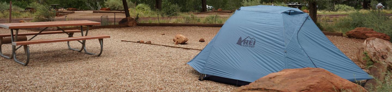 Tent onlyC5