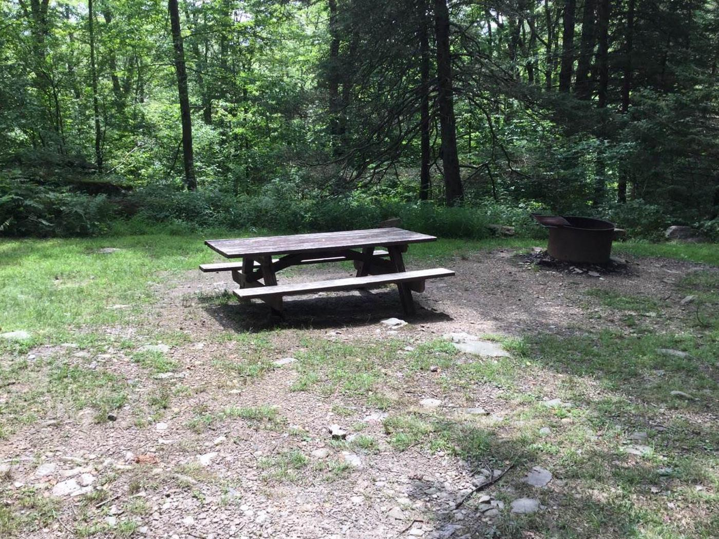 Loleta Recreation Area: Campsite 4