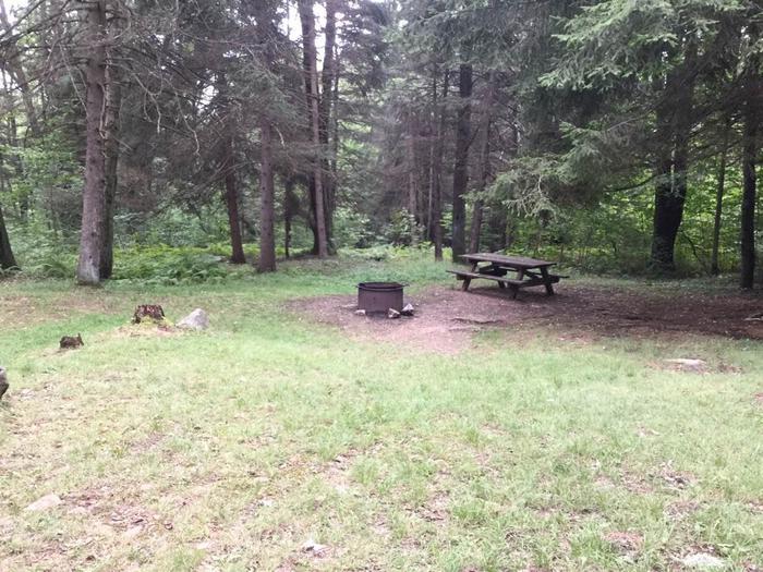 Loleta Recreation Area: Campsite 5