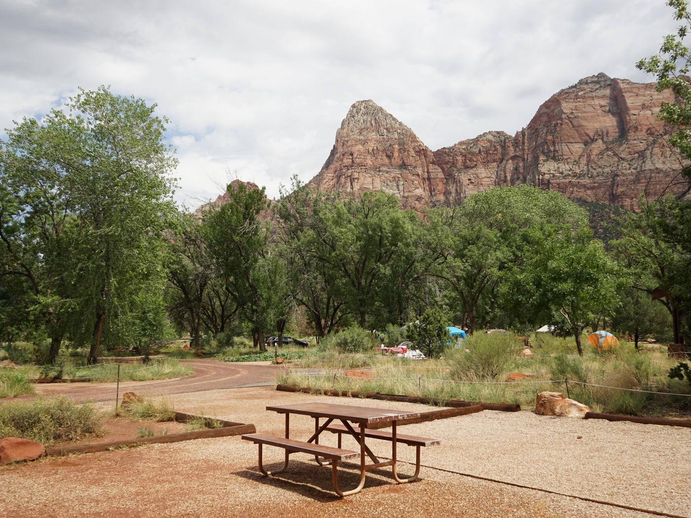 Campsite areaC15
