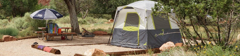 Tent onlyC21