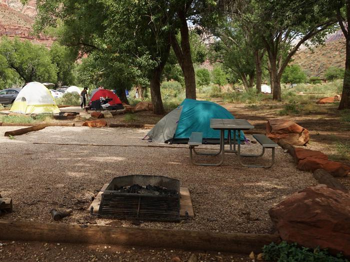 Campsite areaC22