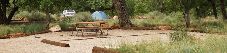 Tent onlyC23