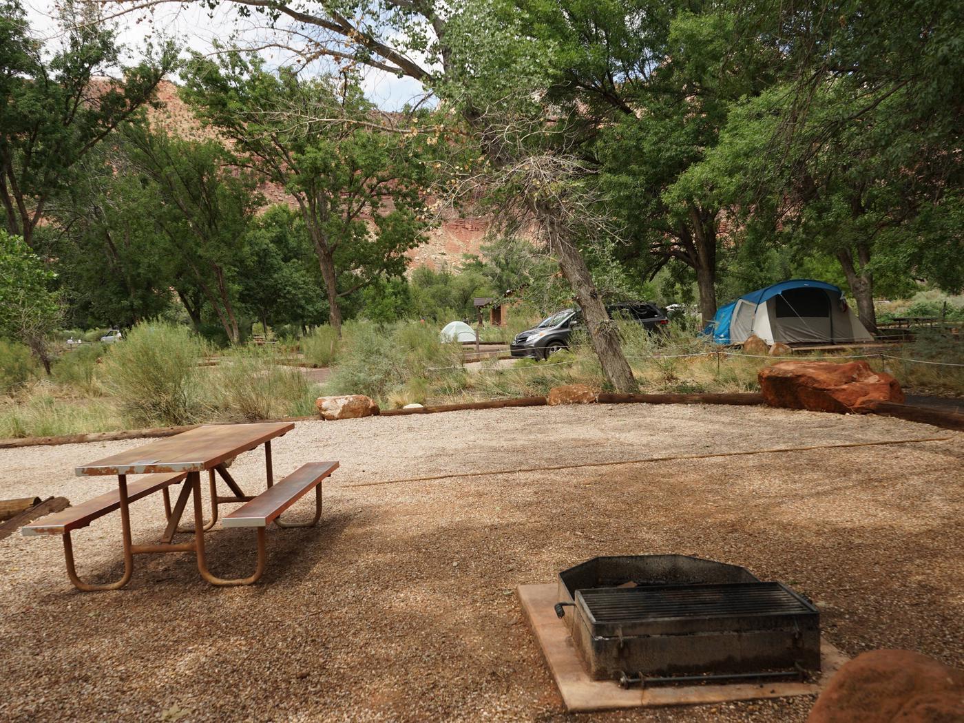 Campsite areaD4