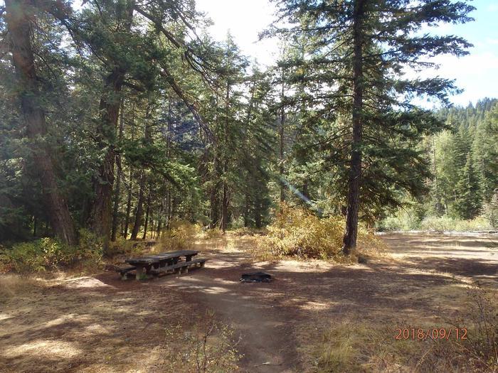 Sawmill FlatWalk in tent site near the river