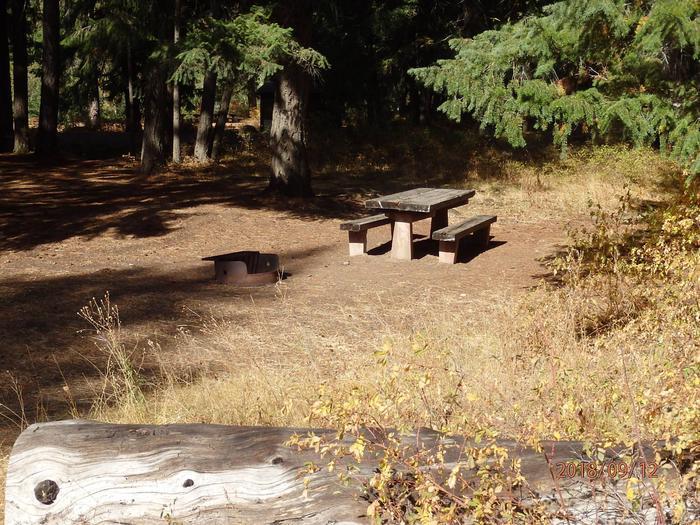 Sawmill FlatNice walk in tent site