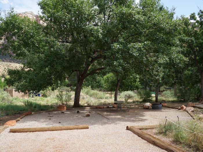 Campsite areaC29
