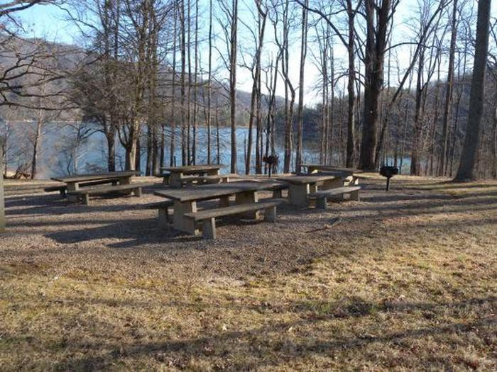 Watauga Point Picnic Tables
