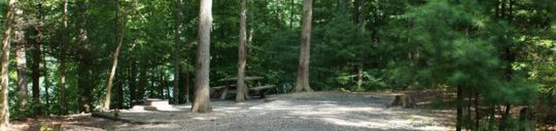 Site 46