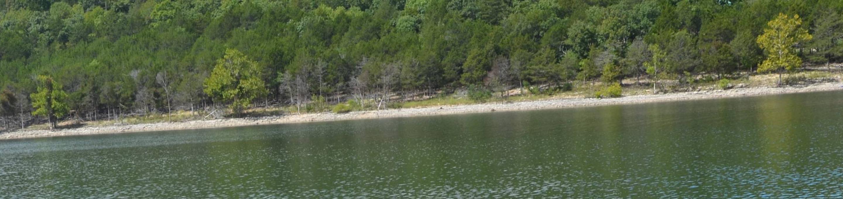 Aunts Creek