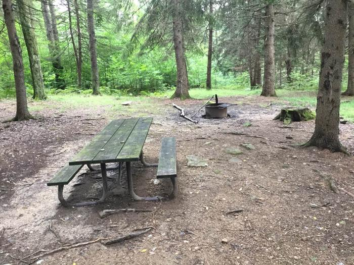 Loleta Recreation Area: Campsite 6