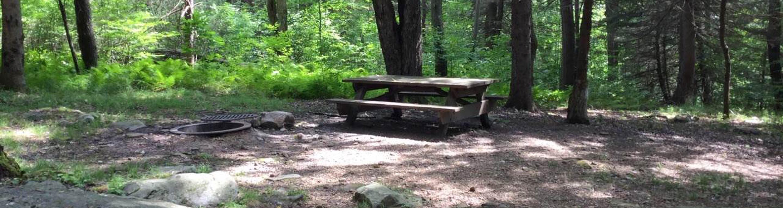 Loleta Recreation Area: Campsite 7